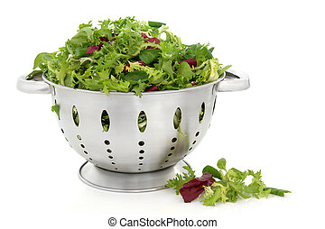 Lettuce Salad Leaves - Fresh lettuce salad leaves of...