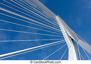 Detail of the cable stayed Erasmus bridge in Rotterdam, the...