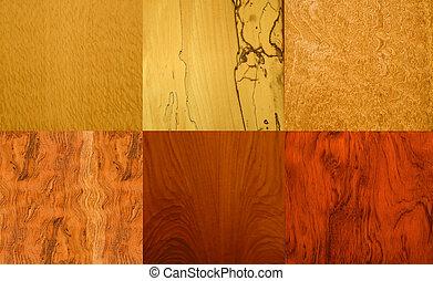 real wood samples with veneer