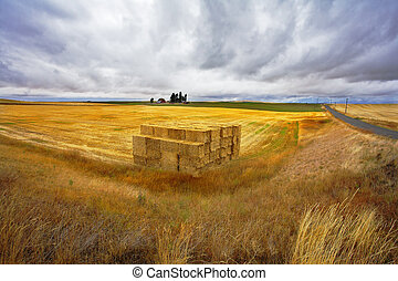 The big haystack on an autumn floor after harvesting Other...
