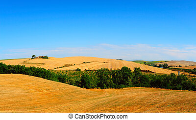 Tuscany Landscape with Pond in the Morning