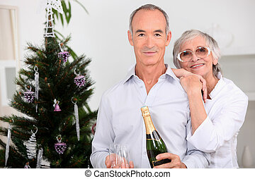 Elderly couples drinking champagne at Christmas