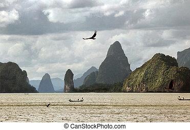 Vôo, mar, águia, contra, montanhas