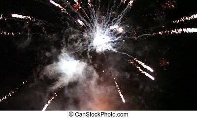 Firework - firework in dark sky