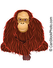 Orangutan cartoon - Vector illustration of sitting orangutan...