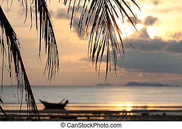 Sunset with palm tree leaves