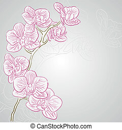 Orchid - Vector greetings card for holiday with orchid...