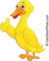 Duck Carton