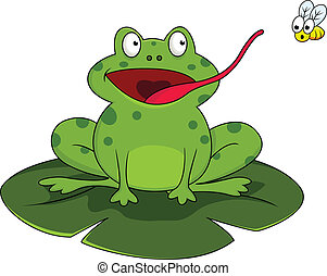Frog with fly - Vector illustration of frog with fly