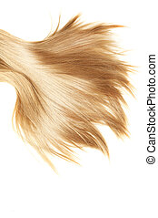 healthy hair - human blonde hair on white isolated...