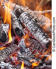 Flaming wooden coal logs of camping fireplace 04
