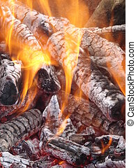 Flaming wooden coal logs of camping fireplace 06