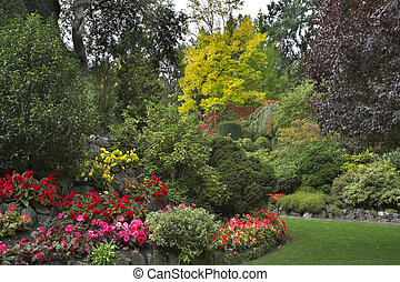 Delightful glade. - The green lawn surrounded by flower beds...