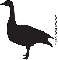 Silhouette of a Canadian goose