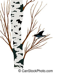starling on birch drawing,