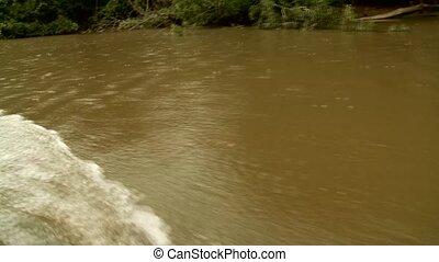 River - Amazon River, South America