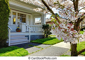 Little old cute house with a blooming cherry tree.