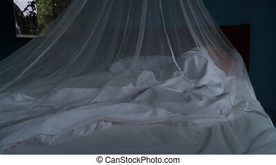 Mosquito Net And Woman - Woman In Tropes With Mosquito Net