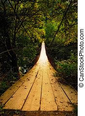 suspension bridge - suspended wooden bridge illuminated by...