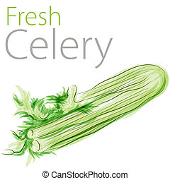 Fresh Celery - An image of a watercolor painting of fresh...