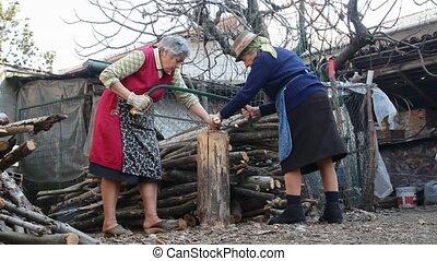active elders - two elder women cutting wood  with handsaw