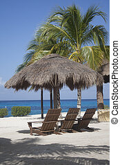 Tropical Grass Beach Hut - a color photographic image of a...