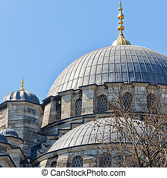 yeni cammii mosque 03 - A view of the majestic yeni cammii...