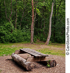 forest picnic - A picnic area set in the middle of a forest...