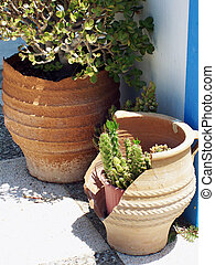 broken pottery with cacti inside in the hot greek sunshine