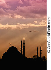 Suleiman Mosque 03 - A view of the majestic Suleiman Mosque...