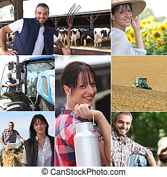 Life on the farm collage