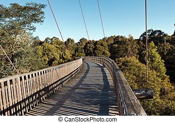 Pedestrian bridge - Winding pedestrian bridge over the park...