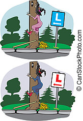 Witch accident - driving school - driving lesson, driving...