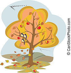 autumn tree - four seasons - falling leaves, fall is coming,...