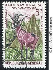 Roan Antelope - SENEGAL - CIRCA 1960: stamp printed by...