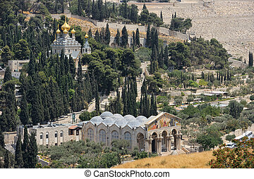 Mount of Olives, view from the walls of Jerusalem. - Mount...