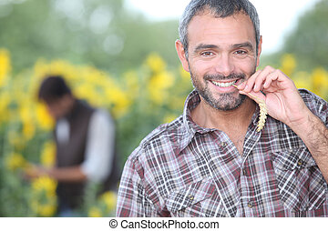 man chewing on corn