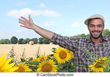 granjero, girasoles