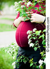 Anonymous pregnant woman - Close-up of an anonymous pregnant...