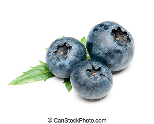 Blueberry - isolated blueberry