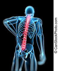 Highlighted spine - 3d rendered medical x-ray illustration -...