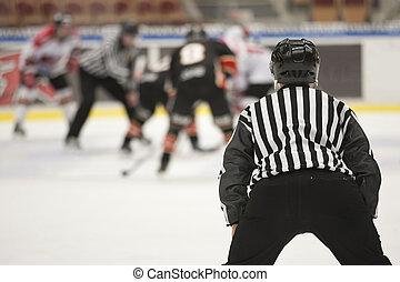 gelo, hóquei, árbitro