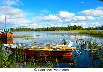 Swedish lake - A beautiful lake in Sweden in a summer sunny...