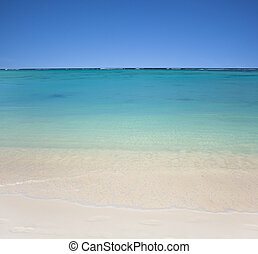 beach with clear waters and blue sky