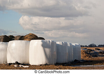 silage, bales
