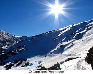 beau, ensoleillé, hiver, jour