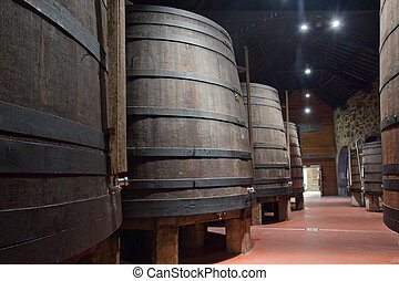 cellar with wine barrels - path in old cellar with big wine...