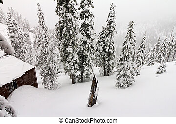 Mountain Cabin During a Winter Blizzard - Mountain cabin...