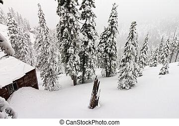 Mountain Cabin During a Winter Blizzard - Mountain cabin...