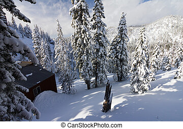 Mountain Cabin After a Winter Blizzard - Mountain cabin...